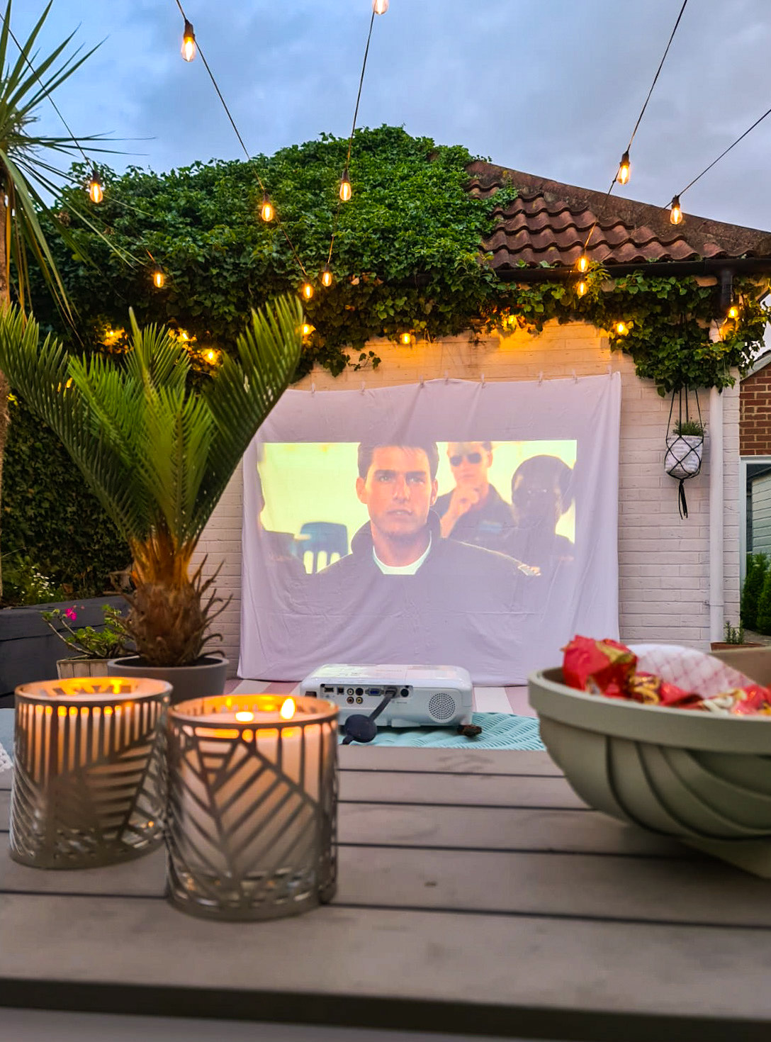 OUR DIY GARDEN MOVIE NIGHT